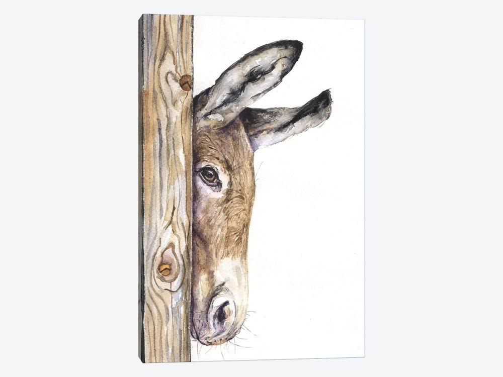 Donkey On White by George Dyachenko 1-piece Canvas Art Print