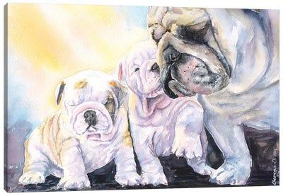 English Bulldog Family Canvas Art Print