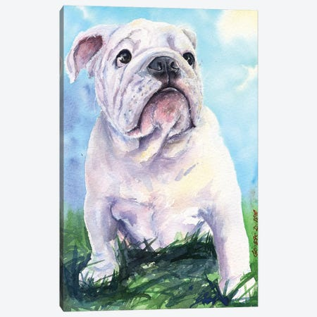 English Bulldog II Canvas Print #GDY62} by George Dyachenko Canvas Art Print