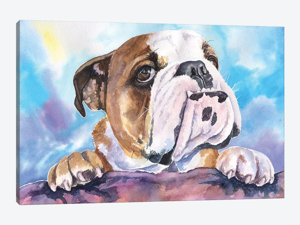 English Bulldog V 1-piece Canvas Wall Art