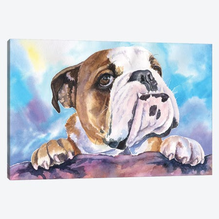 English Bulldog V Canvas Print #GDY66} by George Dyachenko Canvas Wall Art