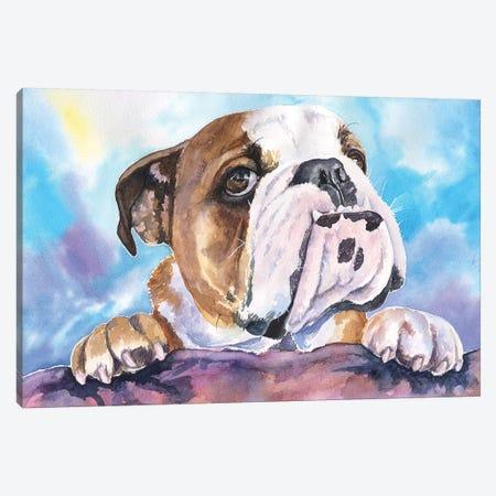 English Bulldog V Canvas Print #GDY66} by George Dyachenko Canvas Wall Art