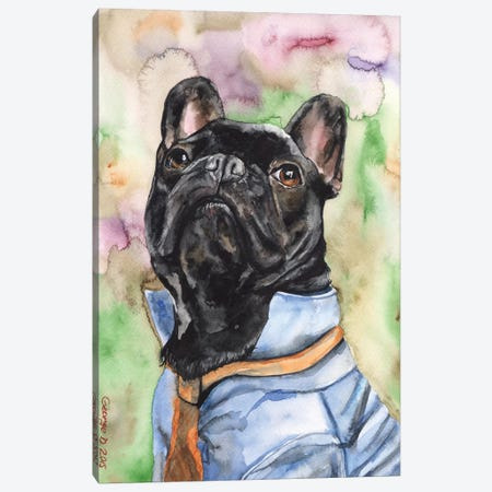 Fancy French Bulldog Canvas Print #GDY67} by George Dyachenko Canvas Artwork