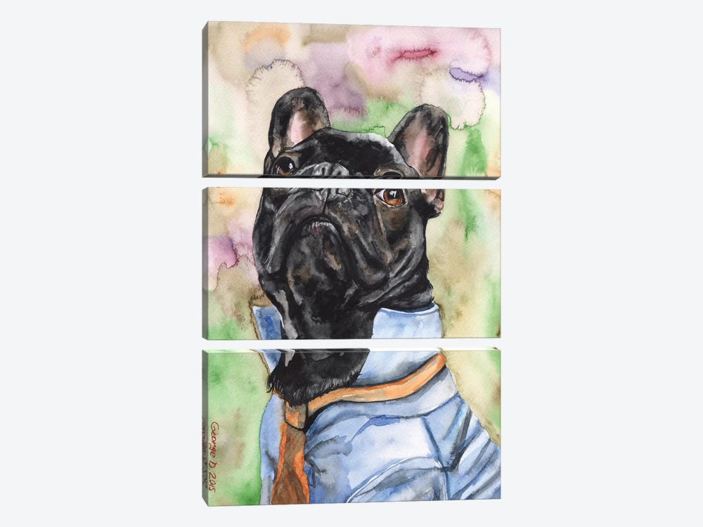 Fancy French Bulldog by George Dyachenko 3-piece Canvas Print