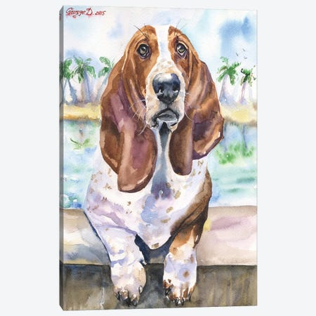 Basset IV Canvas Print #GDY6} by George Dyachenko Canvas Art Print