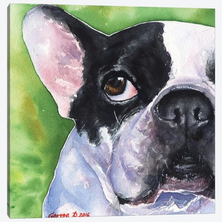 French Bulldog Canvas Print #GDY70} by George Dyachenko Canvas Wall Art