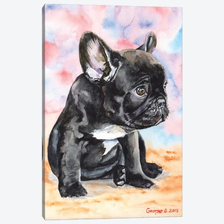 French Bulldog Puppy II Canvas Print #GDY72} by George Dyachenko Canvas Art