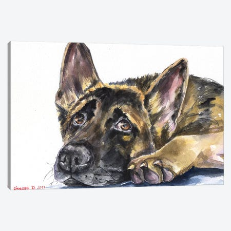 German Shepherd Canvas Print #GDY75} by George Dyachenko Canvas Print