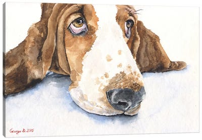 Basset V Canvas Art Print
