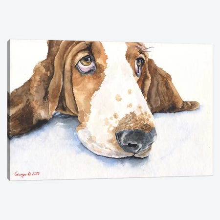 Basset V Canvas Print #GDY7} by George Dyachenko Art Print