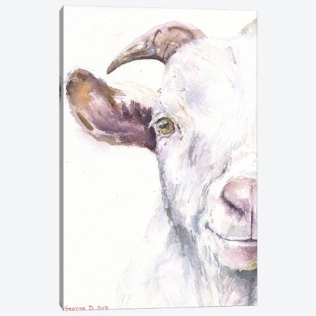 Goat Canvas Print #GDY81} by George Dyachenko Canvas Print