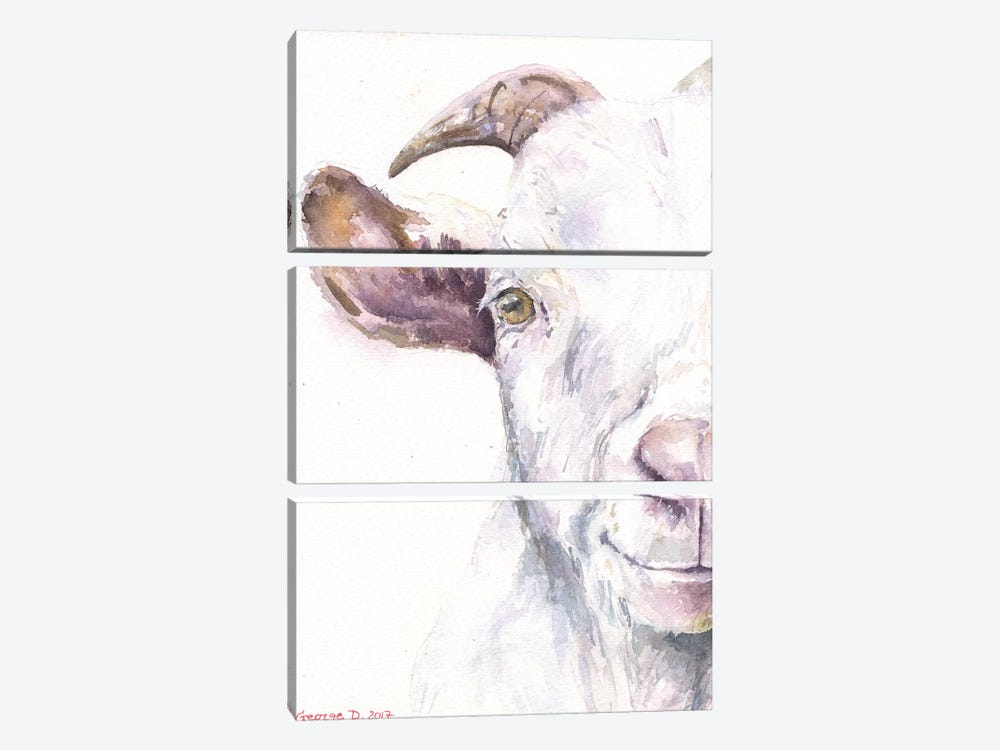 Goat by George Dyachenko 3-piece Canvas Print