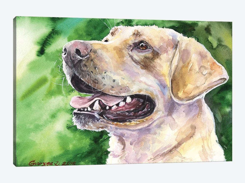 Golden Labrador I by George Dyachenko 1-piece Canvas Artwork