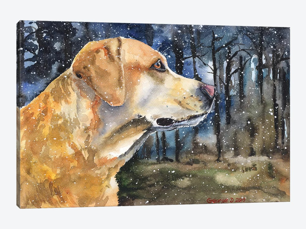 Golden Labrador II by George Dyachenko 1-piece Canvas Print
