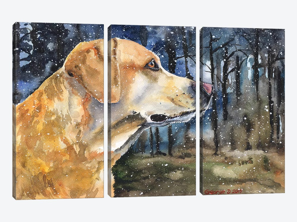 Golden Labrador II by George Dyachenko 3-piece Canvas Print