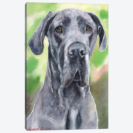 Great Dane I Canvas Print #GDY84} by George Dyachenko Canvas Artwork