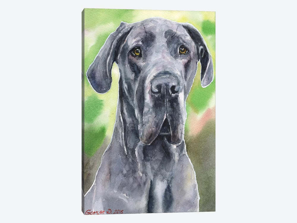 Great Dane I by George Dyachenko 1-piece Canvas Artwork