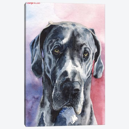 Great Dane III Canvas Print #GDY86} by George Dyachenko Canvas Art