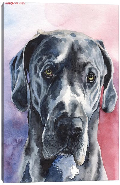 Great Dane III Canvas Art Print