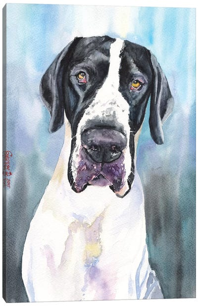 Great Dane IV Canvas Art Print