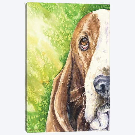 Basset On Green Canvas Print #GDY8} by George Dyachenko Canvas Wall Art