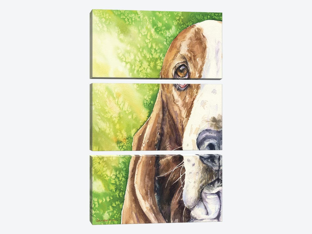 Basset On Green by George Dyachenko 3-piece Canvas Art Print