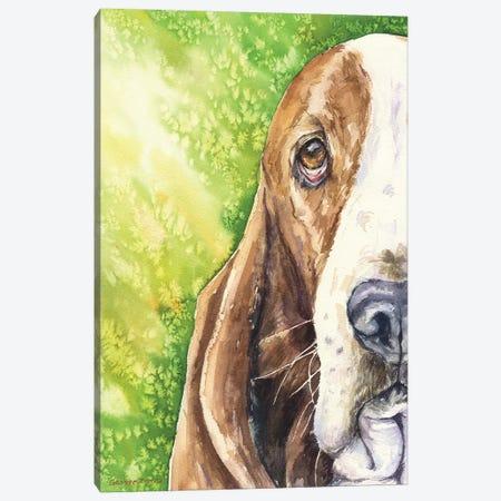 Basset On Green Canvas Print #GDY8} by George Dyachenko Canvas Wall Art