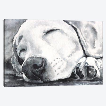 Happy Dreams Canvas Print #GDY90} by George Dyachenko Canvas Artwork