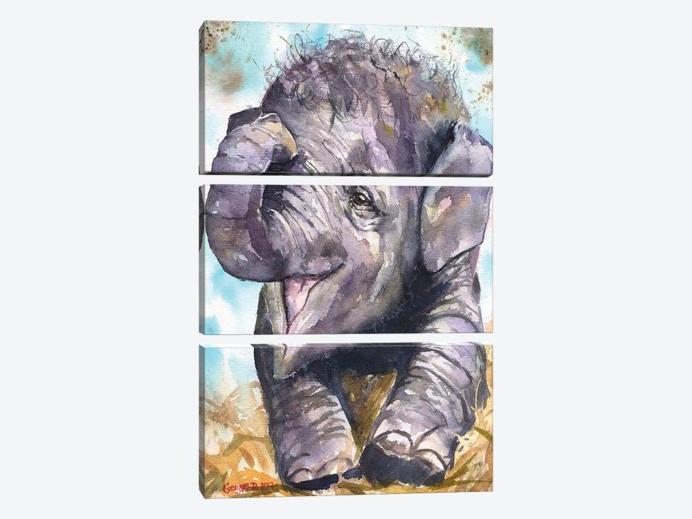 Happy Elephant by George Dyachenko 3-piece Canvas Art