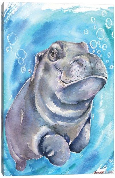 Hippo Baby I Canvas Art Print