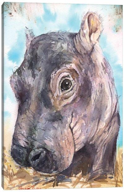 Hippo Baby II Canvas Art Print