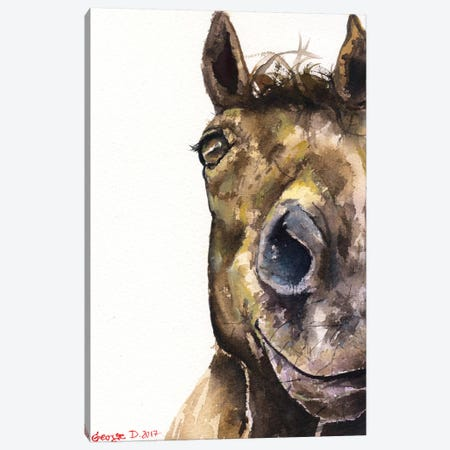 Horse Canvas Print #GDY97} by George Dyachenko Canvas Print