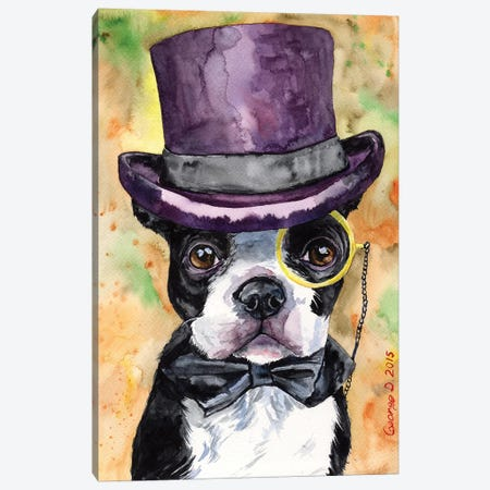 Intelligent Boston Terrier Canvas Print #GDY98} by George Dyachenko Canvas Artwork