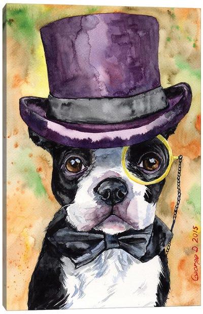 Intelligent Boston Terrier Canvas Art Print