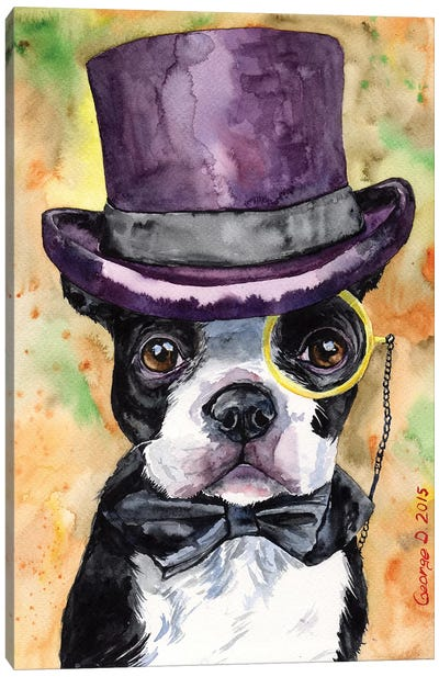 Intelligent Boston Terrier Canvas Art Print