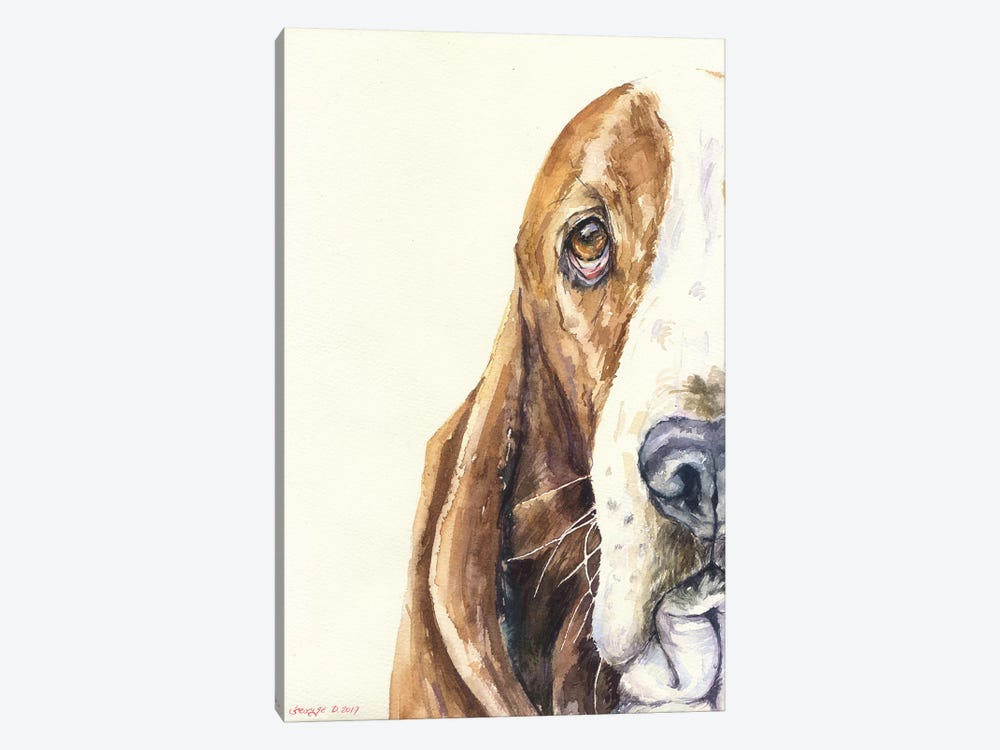 Basset On White by George Dyachenko 1-piece Canvas Artwork