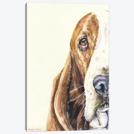 Basset On White Canvas Print #GDY9} by George Dyachenko Canvas Art