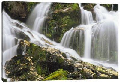 Falls On North Fork Sauk River, Mt Baker, Snoqualmie National Forest, Washington Canvas Art Print