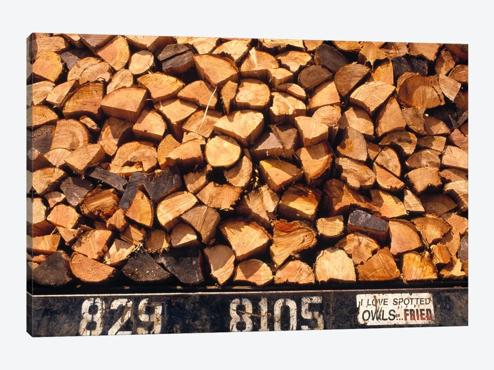 Firewood Hauled From Clearcut On Truck Bed With 'I Love Spotted Owls, Fried' Bumper Sticker, Suislaw National Forest, Oregon by Gerry Ellis 1-piece Canvas Art Print