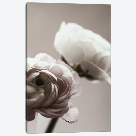 Blossom Dark Canvas Print #GEL123} by Monika Strigel Canvas Art