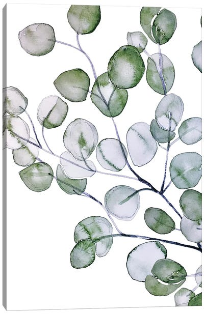 Eucalyptus Watercolor Canvas Art Print
