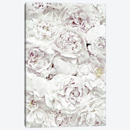Flowers Peony White 3-Piece Canvas #GEL173} by Monika Strigel Canvas Art Print