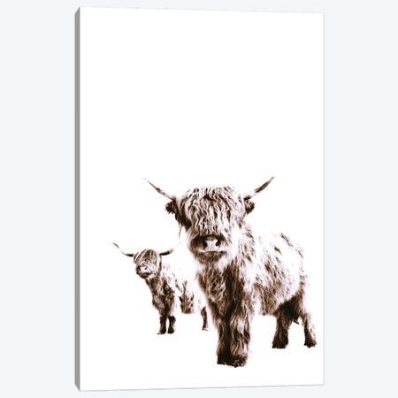 Highland Cows Lulu And Sara Canvas Print #GEL183} by Monika Strigel Canvas Wall Art