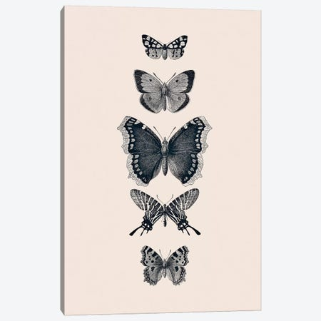 Inked Butterflies Beige Canvas Print #GEL199} by Monika Strigel Canvas Print