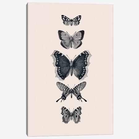 Inked Butterflies Beige Canvas Print #GEL199} by Monika Strigel Canvas Print