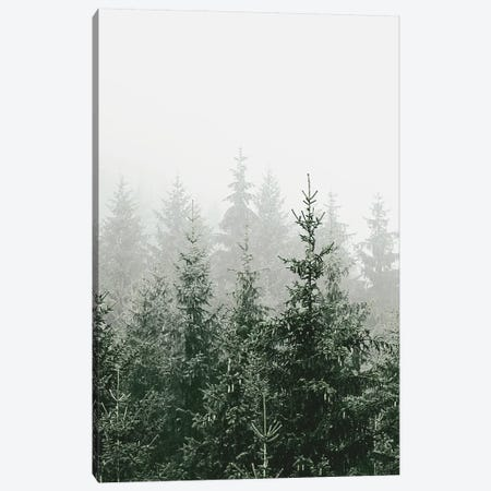 Mountain Forest Green Canvas Print #GEL218} by Monika Strigel Canvas Art
