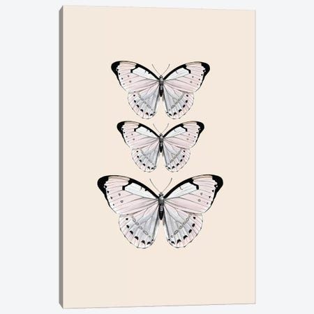 Papillion Beige Canvas Print #GEL236} by Monika Strigel Art Print