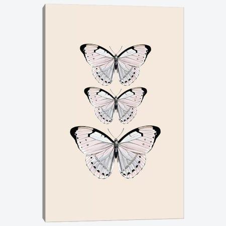 Papillion Beige Canvas Print #GEL236} by Monika Strigel Art Print