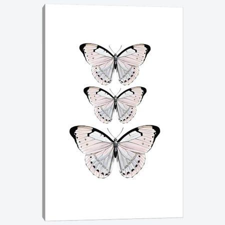 Papillion Rose Canvas Print #GEL238} by Monika Strigel Canvas Artwork