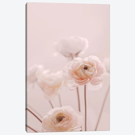 Rose Flowers I Canvas Print #GEL246} by Monika Strigel Canvas Art